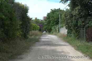 Castelnau-le-Lez : mobilisation des riverains contre un projet immobilier - France 3 Régions