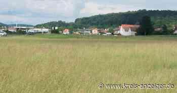 Hoffen auf schnellstmögliche Baugebietsentwicklung in Selters - Kreis-Anzeiger