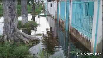 Maracay   Habitantes de La Punta y Mata Redonda deben caminar sobre cloacas desbordadas - El Pitazo