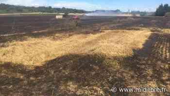 Hérault : une centaine de pompiers déployés sur Pignan pour un incendie - Midi Libre