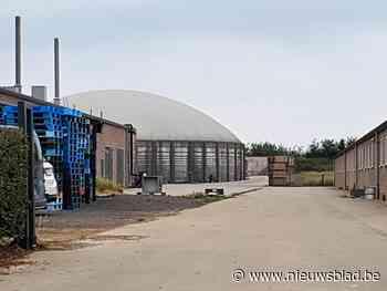 Omgevingsvergunning varkensbedrijf Wauters Enegy vernietigd ... (Kortessem) - Het Nieuwsblad
