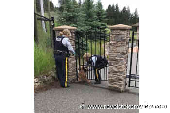 Lake Country RCMP help baby deer through fence – Revelstoke Review - Revelstoke Review