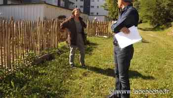 Tarascon-sur-Ariège. Des jardins familiaux germent au pied des immeubles - LaDepeche.fr