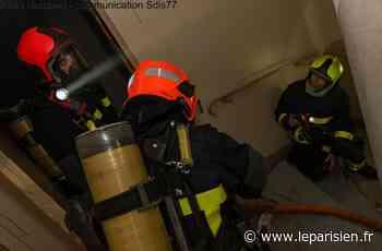 Seine-et-Marne : deux incendies au milieu de la nuit à Torcy et Saint-Thibault-des-Vignes - Le Parisien
