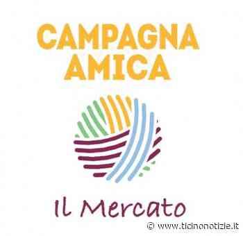 Trecate, domani torna l'Agrimercato in piazza Cavour - Ticino Notizie