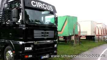 Rangendingen: Zirkus Salto Mortale sitzt auf gepackten Koffern - Rangendingen - Schwarzwälder Bote