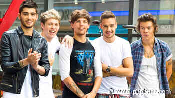 QUIZ: Everyone is a combination of two One Direction members, which are you? - PopBuzz