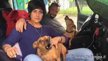 Settimo Torinese, la storia della coppia che vive in auto per non abbandonare i due cani - La Stampa