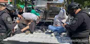 """Cayeron tres """"ratas"""" en Atizapan de Zaragoza, aseguran su lugar en el tambo - Noticias de Texcoco"""