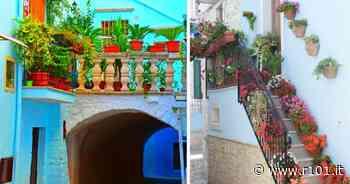Casamassima, il borgo pugliese tutto dipinto di blu - R101