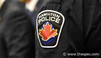 Hamilton police investigating crash that interrupted power in Stoney Creek - TheSpec.com