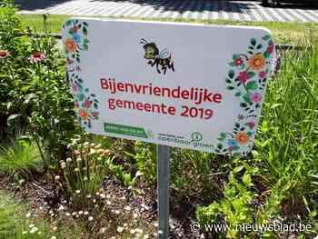 Inspanningen beloond: Bornem is nu officieel bijenvriendelij... (Bornem) - Het Nieuwsblad