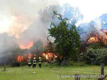 60 Feuerwehrleute kämpfen gegen Flammen - Westfalen-Blatt