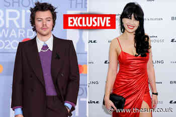 Harry Styles slides into ex Daisy Lowe's DMs trying to woo her after dating seven years ago - The Sun