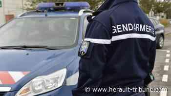 PEZENAS - Un homme de 39 ans condamné pour trafic de stupéfiants - Hérault-Tribune