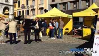 Coldiretti Novara-Vco: con Galliate la riapertura dei mercati di Campagna Amica è completa - Novara Today