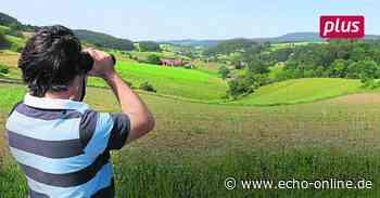 Windräder Bauwillen trifft den Stotz bei Reichelsheim - Echo Online