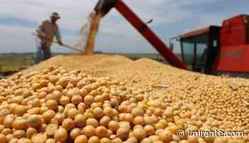 Exportação de grãos deverá ter crescimento de 12% no Porto do Itaqui - Imirante.com