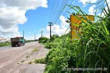 Mato alto encobre placas na BR-135 entre Porto do Itaqui e Vila Maranhão, em São Luís - Jornal Pequeno