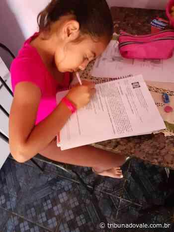 Aulas remotas e interação nas escolas municipais de Ibaiti - Tribuna do Vale