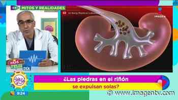 Emisión: 19/06/2020 ¿Las piedras en el riñón se expulsan solas? - Imagen Televisión