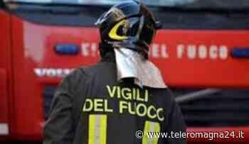 FORLI': Incendio in un allevamento a Pievequinta, morte diverse mucche - Teleromagna24