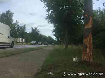 AWV corrigeert mislukte herstellingswerken na ongevallen en ... (Tielt-Winge) - Het Nieuwsblad