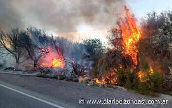 Incendio de pastizales en el ingreso a Palmar del Lago - Diario El Zonda