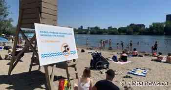 Verdun Beach closure doesn't stop Montrealers from sunbathing, swimming - Globalnews.ca