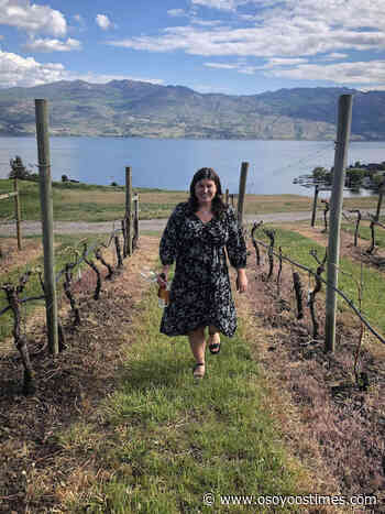 Wine blogger creates list of open wineries to support BC wine - Osoyoos Times - Osoyoos Times