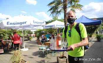 Beim Weingut Hafner: Mittsommer wegen Corona in zwei Schichten - Remshalden - Zeitungsverlag Waiblingen