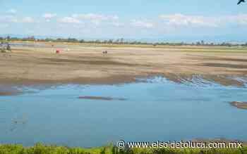 Laguna de Zumpango presenta grave desecación por escasez de lluvias: ejidatarios - El Sol de Toluca