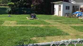 UPDATED: Neighbours Outraged Over Swastika Mowed into Amherstburg Lawn - AM800 (iHeartRadio)