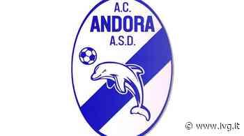 Area Calcio Andora, due nuovi innesti nel consiglio direttivo - IVG.it