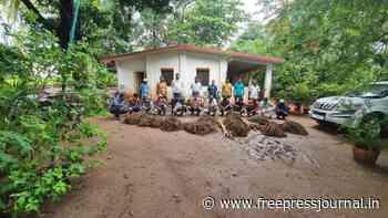 Wildlife crime racket with international links busted in Satara - Free Press Journal