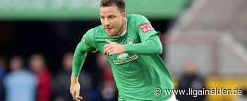 Werder Bremen: Philipp Bargfrede ist noch nicht bei 100 Prozent - LigaInsider