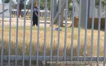 Muere hombre tras arrojarse de tinaco en Pueblo Nuevo - La Voz de la Frontera