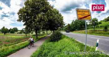 Keine Laternen für den Radweg von Heppenheim nach Bensheim - Echo Online