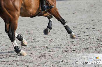 Vanhecke en Frederiks winnen ochtendrubrieken Bonheiden - equnews.be