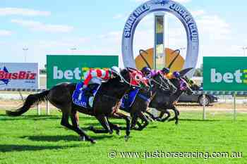 22/6/2020 Horse Racing Tips and Best Bets – Swan Hill - Just Horse Racing