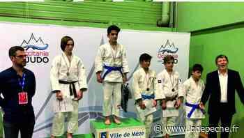 Seysses. Judo : Tristan Semenadisse entre au pôle espoir - ladepeche.fr