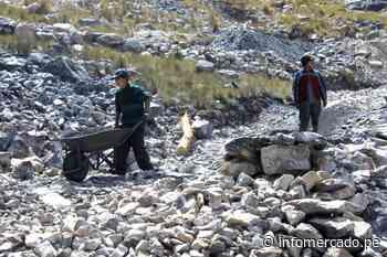 Estado de Emergencia: Cotización del cobre, oro y petróleo acumulan grandes caídas - Infomercado