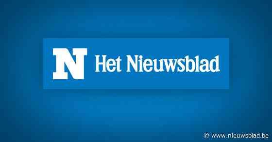 Dronken bestuurster rijdt in Diepenbeek tegen verkeer in om controle te vermijden