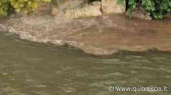 Gottolengo e Ghedi, canale sporco e pesci morti. Nel mirino un'azienda - QuiBrescia.it