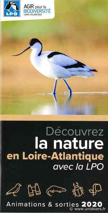 Initiation et formation à l'ornithologie 44350 Guerande lundi 20 avril 2020 - Unidivers