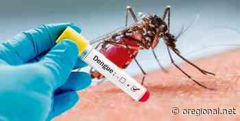 """Pedreira registra 95 casos positivos de """"Dengue"""" em 2020 - O Regional"""