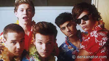33 Days until the One Direction Reunion - What to expect? - Dankanator