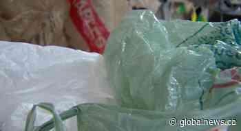 Plastic bags make a comeback in Nova Scotia during first wave of coronavirus pandemic