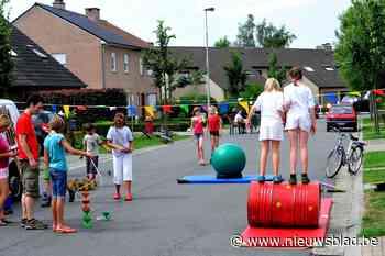 Springkastelen en sport- en spelkoffers voor ideale thuisvak... (Zwalm) - Het Nieuwsblad