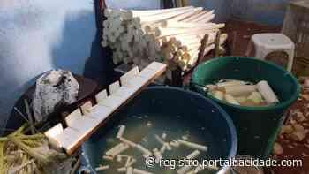PRF descobre duas fábricas clandestinas de palmito em Cajati - Adilson Cabral